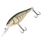 Color_Olive Green Craw