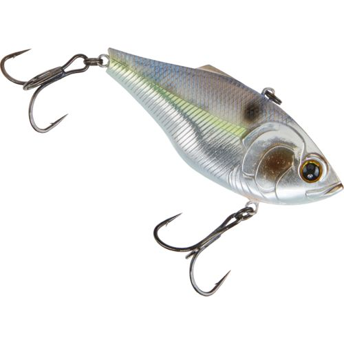 Chrome Threadfin