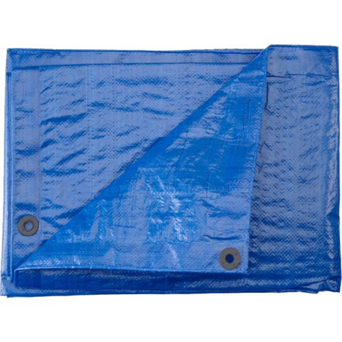 Academy Sports + Outdoors™ 8' x 10' Polyethylene Tarp