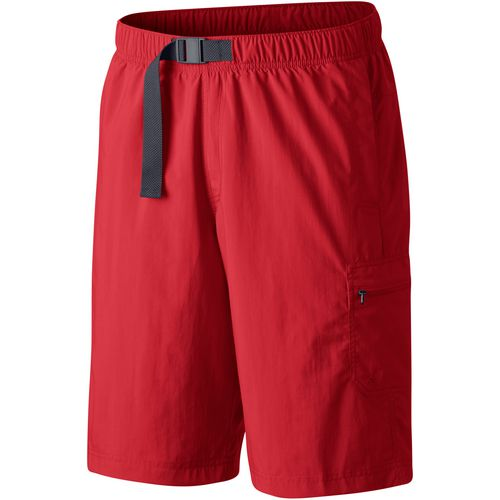Columbia Sportswear Men's Palmerston Peak Big & Tall Shorts