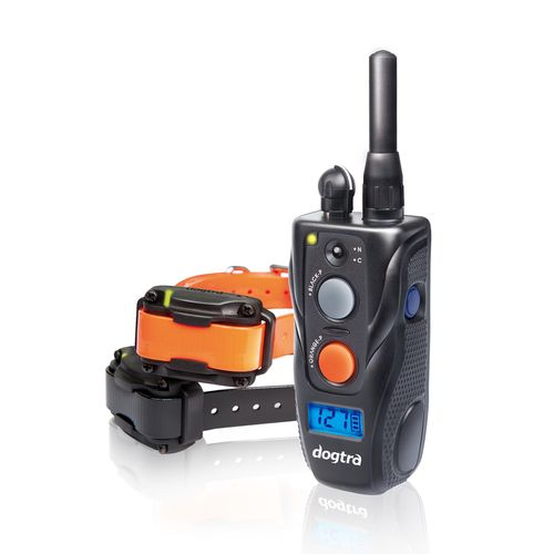Dogtra 282C 2-Dog Training System