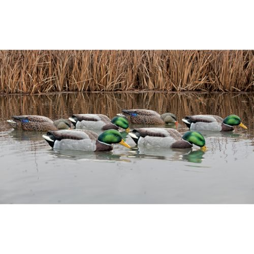 Display product reviews for Avian-X Back Water Topflight Mallards Set