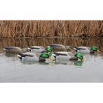 Avian-X Back Water Topflight Mallards Set