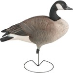 Greenhead Gear® Commercial-Grade 3-D Full-Body Honkers Canada Goose Decoys 6-Pack - view number 2