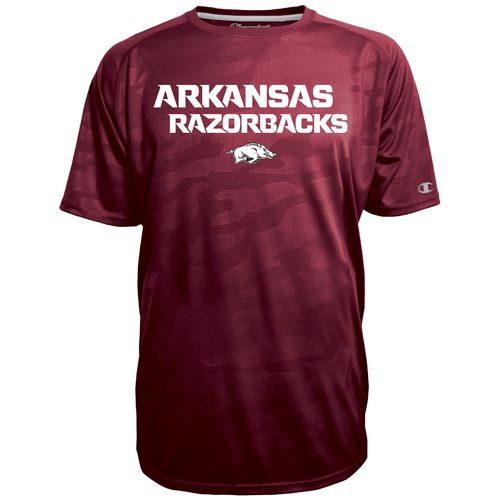 Champion™ Men's University of Arkansas Fade T-shirt