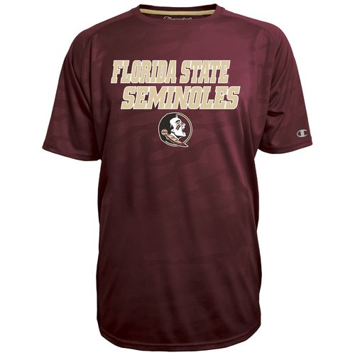 Champion™ Men's Florida State University Fade T-shirt
