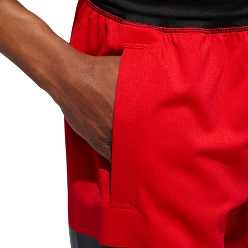 adidas Men's SB Hype Icon Knit Shorts - view number 6