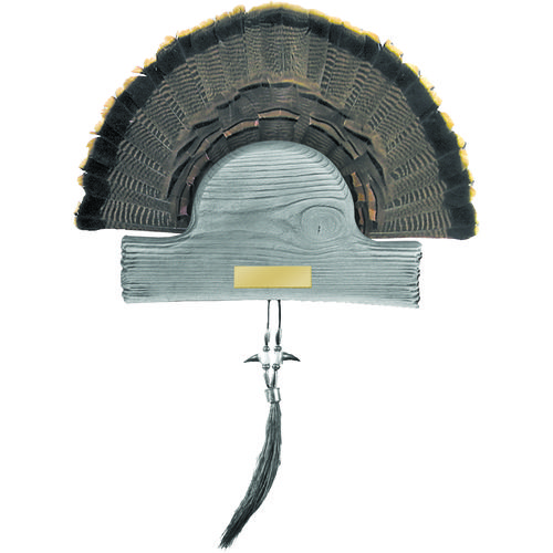 Hunter's Specialties® HS Strut Turkey Tail and Single