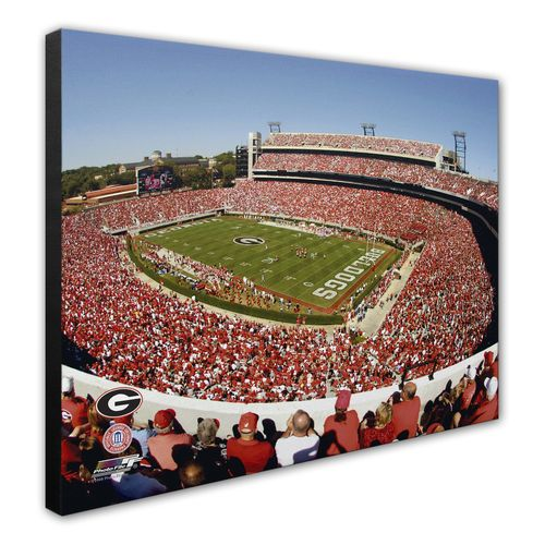 Photo File University of Georgia Sanford Stadium 8' x 10' Photo