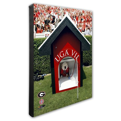 "Photo File University of Georgia 8"" x 10"" Mascot Photo"