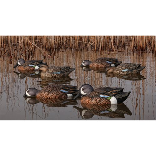 Display product reviews for Avian-X Topflight Blue-Winged Teal Decoys Set