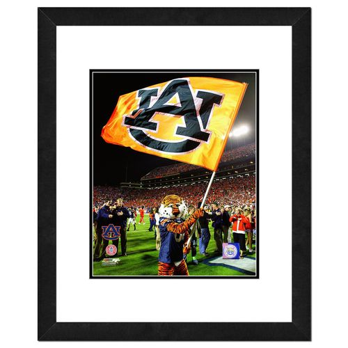 "Photo File Auburn University 10"" x 8"" Mascot"
