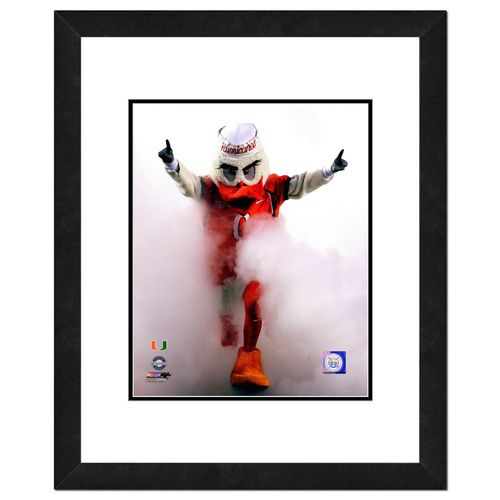 "Photo File University of Miami Mascot 16"" x 20"" Matted and Framed Photo"