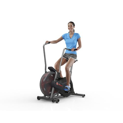 Schwinn Airdyne AD2 Exercise Bike - view number 5