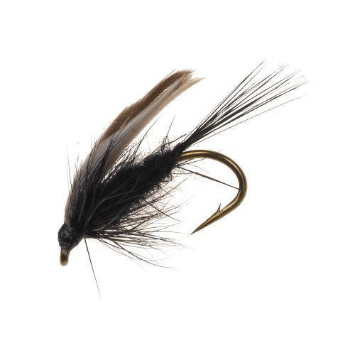 Superfly Black Gnat 1/2 in Wet Fly - view number 1