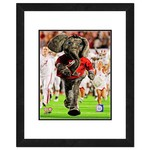 "Photo File University of Alabama 8"" x 10"" Mascot Photo"