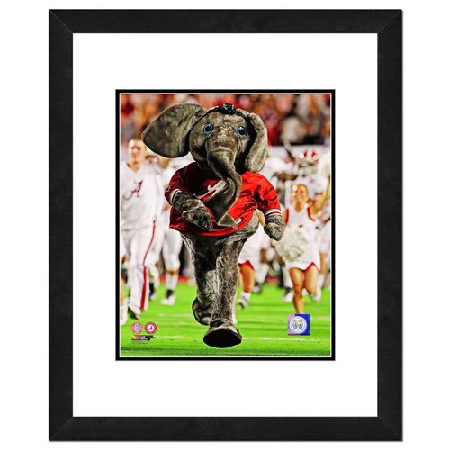 Photo File University of Alabama 8' x 10' Mascot Photo
