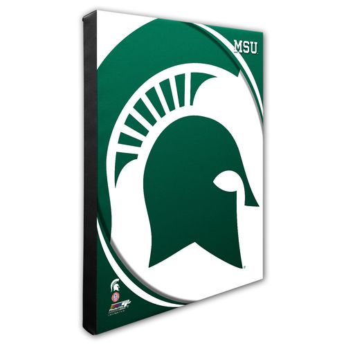 Photo File Michigan State University Logo 16' x 20' Matted and Framed Photo