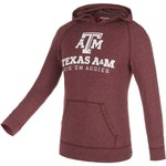 Champion™ Men's Texas A&M University Raglan Pullover Hoodie