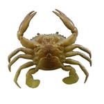 Savage TPE 3-D Crab 1/4 oz. Swimbaits 2-Pack - view number 1