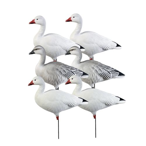 Greenhead Gear® Pro-Grade 3-D Full-Body Snows and Blues Feeder Decoys 6-Pack - view number 2