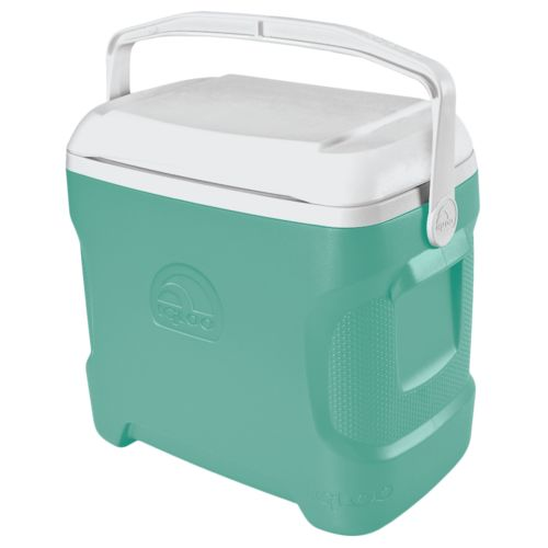 Display product reviews for Igloo Contour™ 30 qt. Personal Cooler