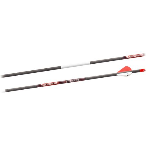 BloodSport Punisher Arrows 6-Pack - view number 1