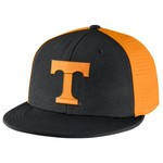 Nike Men's University of Tennessee Players True Swoosh Flex Cap