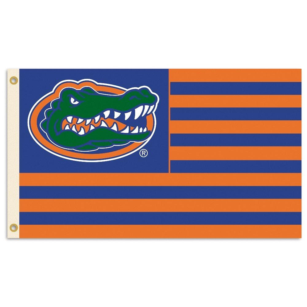 BSI University of Florida 3' x 5' Fan