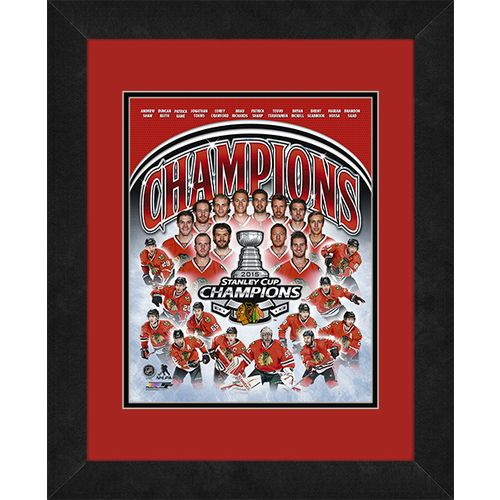 Photo File Chicago Blackhawks 2015 Stanley Cup Champions 8' x 10' Photo