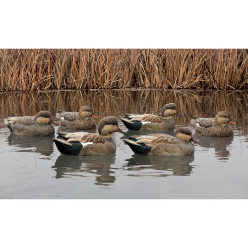 Display product reviews for Avian-X Topflight Gadwall Decoys 6-Pack