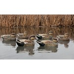 Avian-X Topflight Gadwall Decoys 6-Pack