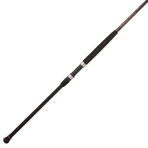PENN® Squadron® II Surf Spinning Rod