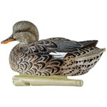 Avian-X Topflight Gadwall Decoys 6-Pack - view number 2