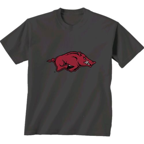 New World Graphics Men's University of Arkansas Alt Graphic T-shirt