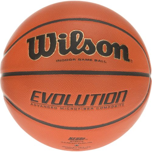 Display product reviews for Wilson Evolution Indoor Basketball