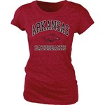 Blue 84 Juniors' University of Arkansas Triblend T-shirt