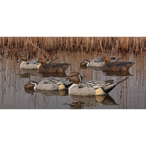 Display product reviews for Avian-X Topflight Pintail Duck Decoys 6-Pack