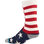 PKWY Men's Houston Astros Memorial Day Brigade Socks - view number 2