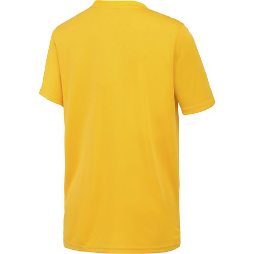 Colosseum Athletics Boys' Louisiana State University Team Stripe T-shirt - view number 2
