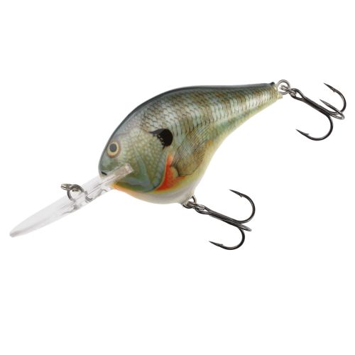 Image for Rapala® DT® Series DT10 Crankbait from Academy