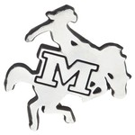 Team_McNeese State Cowboys