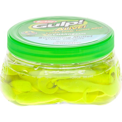 Display product reviews for Berkley® Gulp! Alive! 12-1/2 oz. Saltwater Swimming Mullet Soft Bait