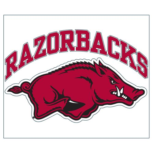 "Stockdale University of Arkansas 8"" x 8"" Vinyl"