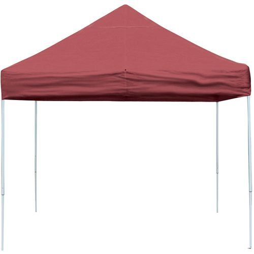 ShelterLogic Pro Series Straight-Leg 10' x 10' Open-Top Pop-Up Canopy