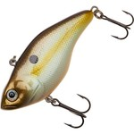 Color_SUMMER SHAD