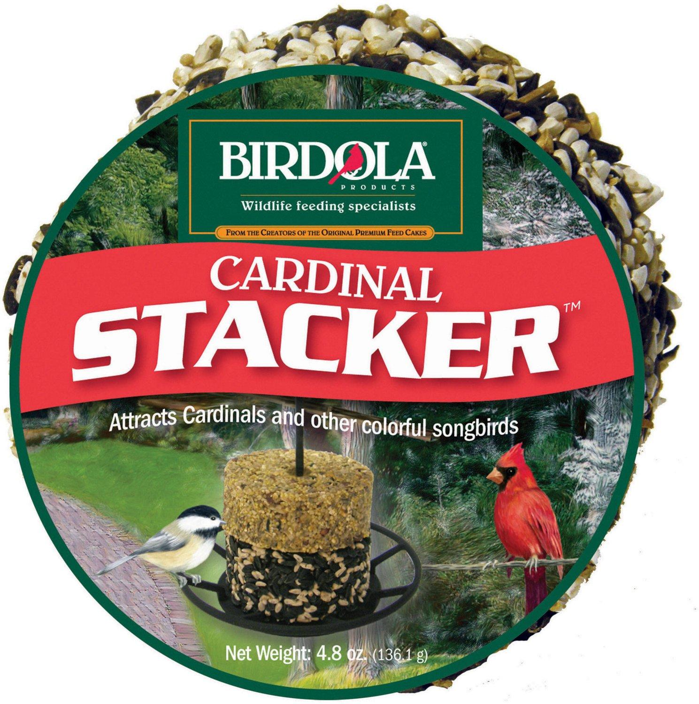 Bird Feed & Feeders