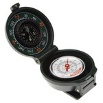 Coghlan's Compass Thermometer - view number 1