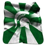 Logo Michigan State University Raschel Throw