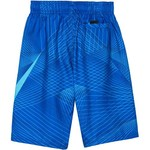 Nike Boys' 8 in Volley Short - view number 1